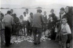 Devagando peixe